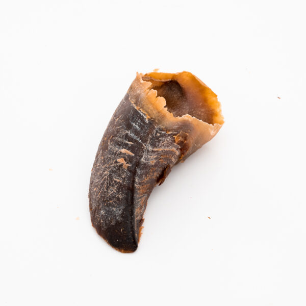 Beef Hooves Pack | Tasty, Long Lasting, Single Ingredient, All-Natural Dog Chews |